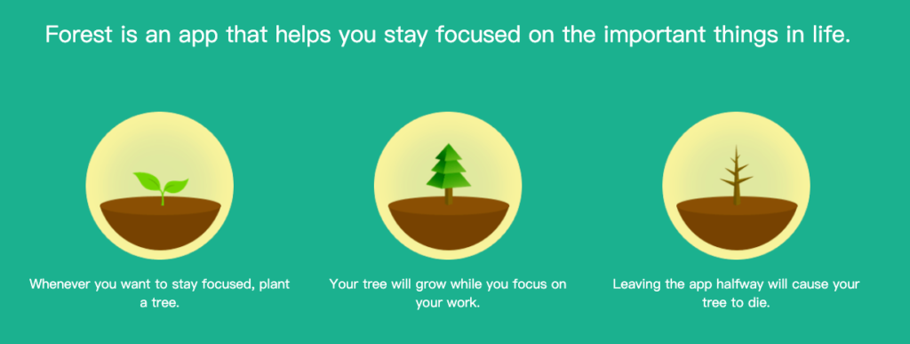 Forest is an app that helps you stay focused on the important things in life. Whenever you want to stay focused, plant a tree. Your tree will grow while you focus on your work. Leaving the app halfway will cause your tree to die.