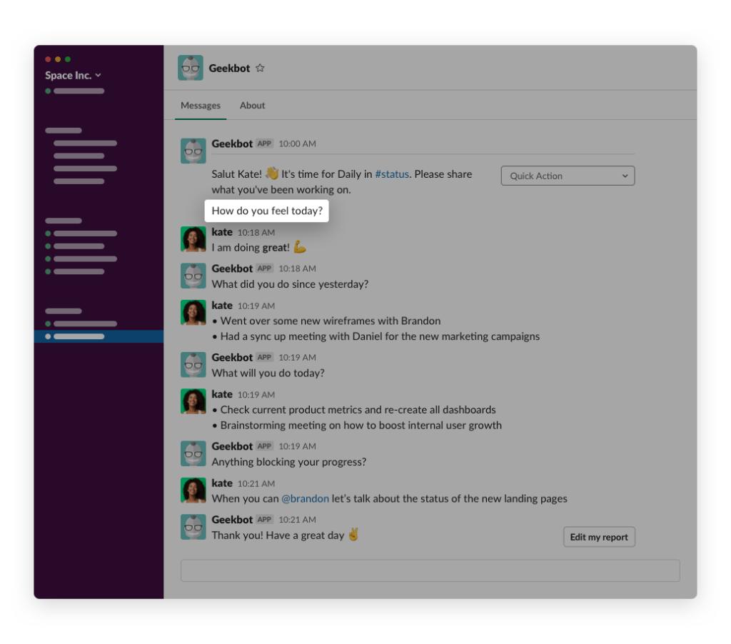 Conversation with Geekbot